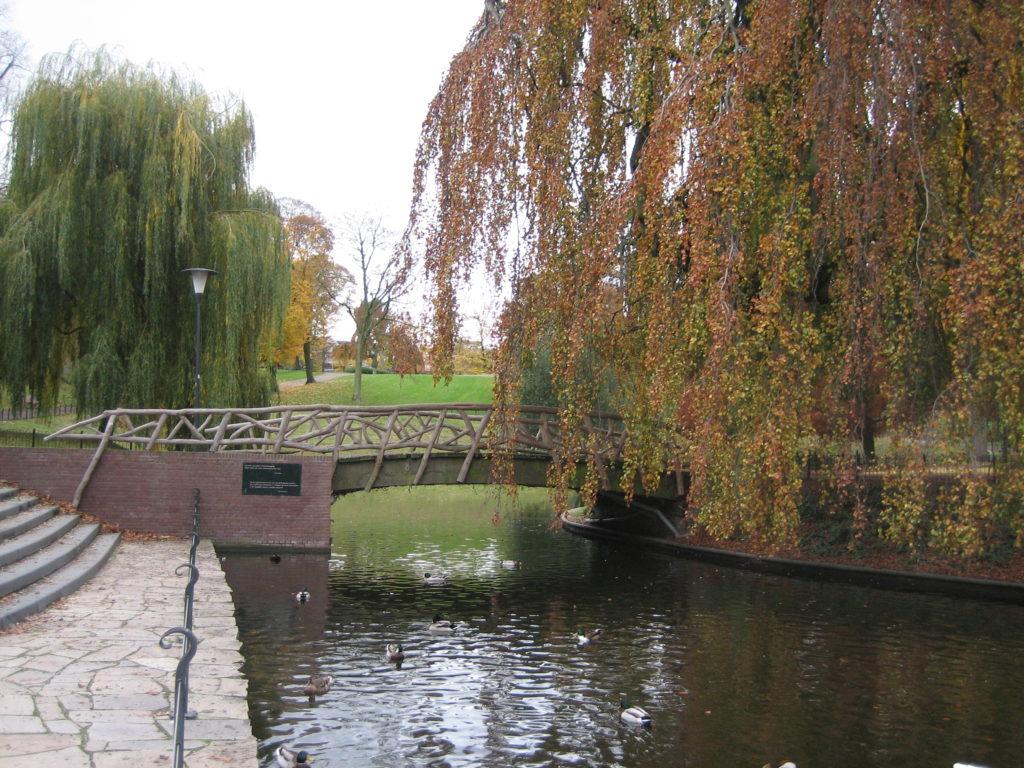kronenburgerpark3